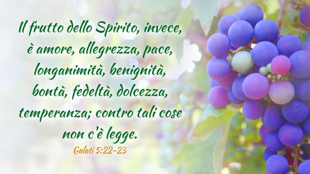 Studiare la Bibbia: lo Spirito Santo nella Bibbia