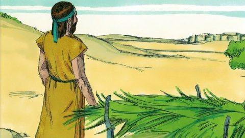 Storie della Bibbia: Giona profeta