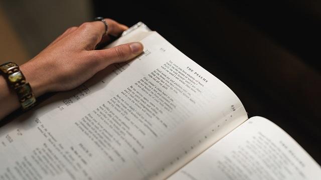 Omelia della domenica prossima: la vera devozione spirituale