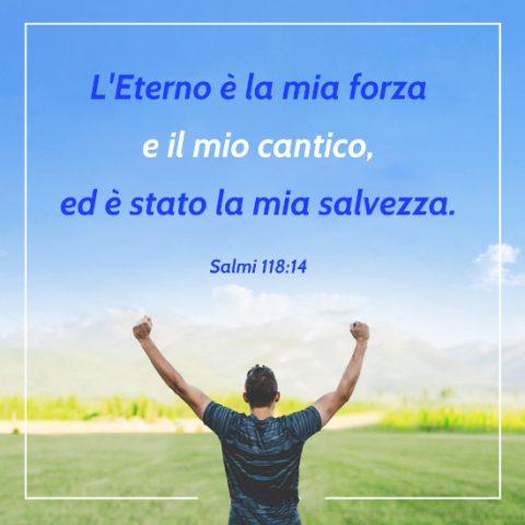 Dio salva