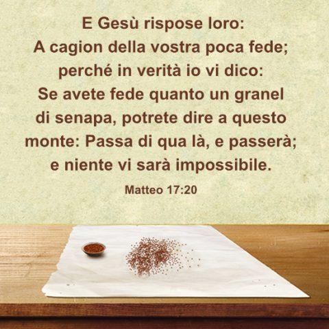 La vera fede