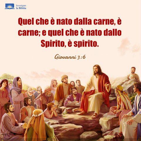 Signore Gesù e i discepoli