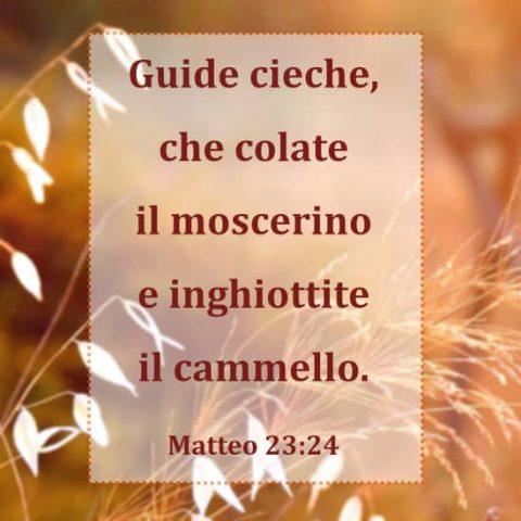 Matteo 23:24