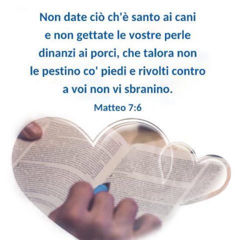 Matteo 7:6