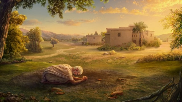 Giobbe pregava nella cenere