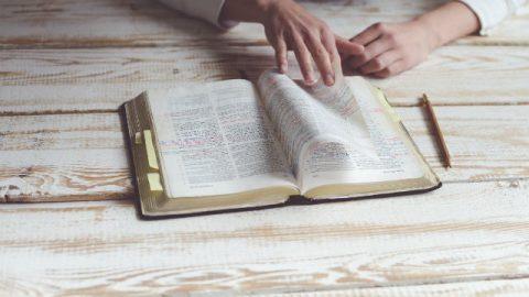 Sta leggendo la Bibbia
