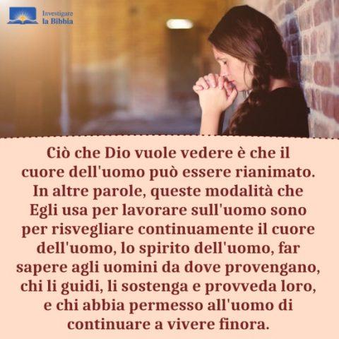 la chiamata di Dio