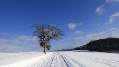 Giorno di neve