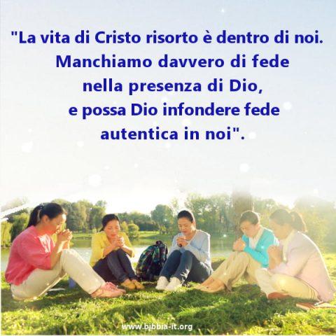 credente,pregare,cristiane,culto