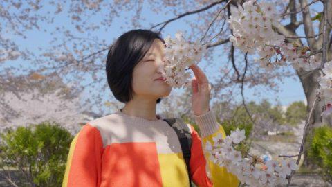 una ragazza visitare i fiori, pensare tutte le cose nelle mani di Dio.