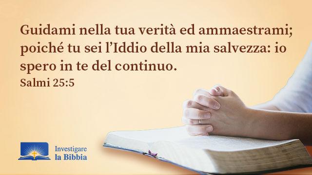 Versetti biblici: Guidare nella Bibbia