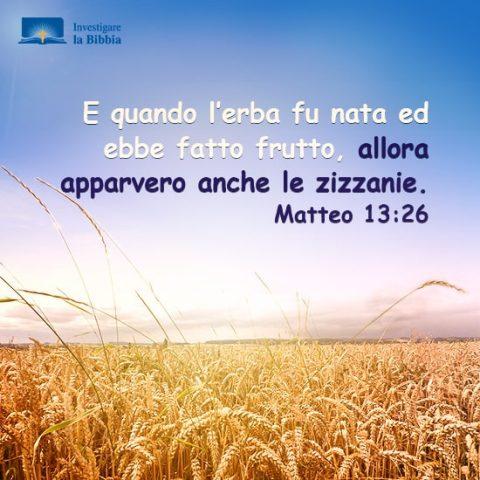 Matteo 13:26