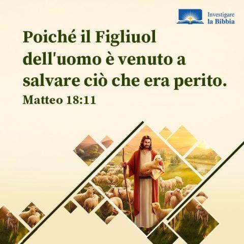 Il Signore Gesù vede l'uomo come una pecora tra le sue braccia