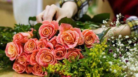 Bellissimi fiori