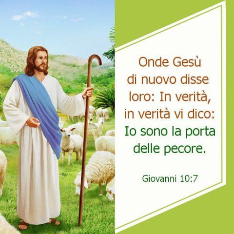 Gesù è un buon pastore, protegge sempre le pecore