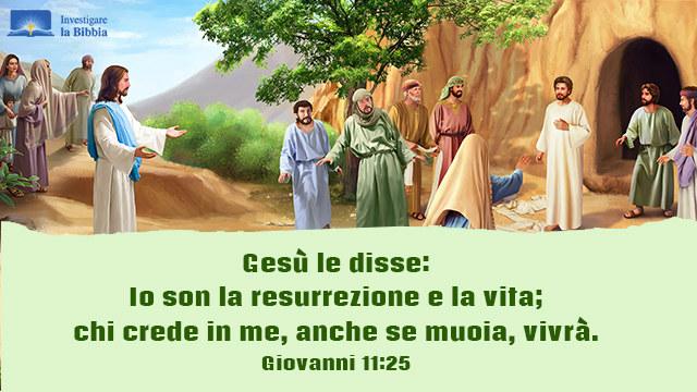 I segni miracolosi del Signore Gesù