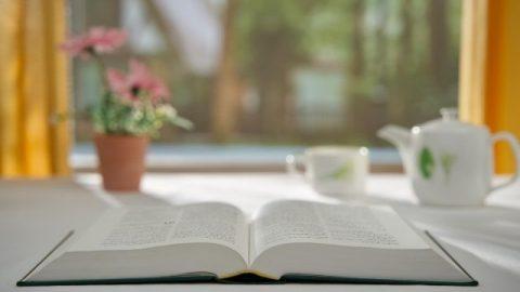 Domande sulla Bibbia: Ci sono le parole e l'opera di Dio oltre la Bibbia?