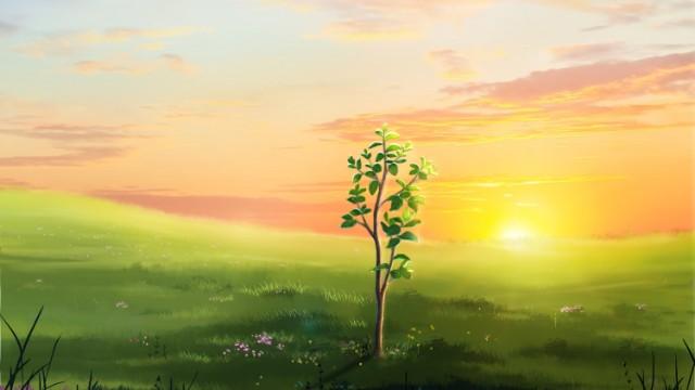 Un albero della vita