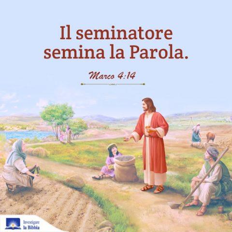 Il Signore Gesù predica la parabola della semina