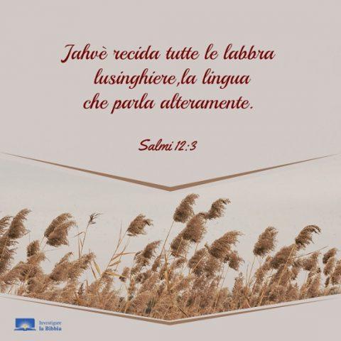 Salmi 12-3