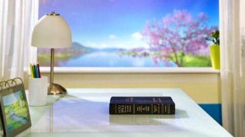 Buone notizie ricevute alle riunioni di studio della Bibbia
