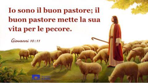 Gesù Cristo e un buon pastore