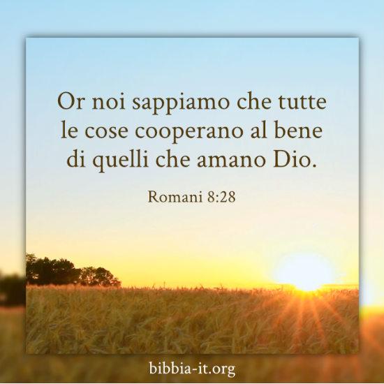 Frasi Bibliche Romani 8 28