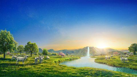 La via della vita eterna