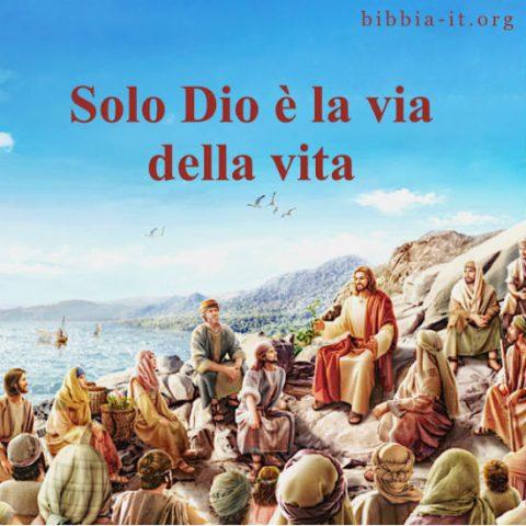 Frasi evangelici Il Signore Gesù predica ai discepoli al mare.
