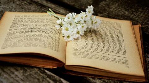 Studi biblici approfonditi: padroneggia i tre elementi di leggere la Bibbia, sarai più vicino a Dio