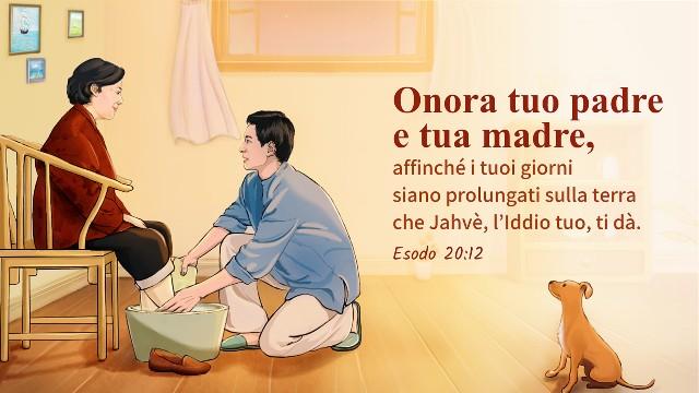 Versetti Biblici 10 Frasi Sui Genitori