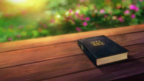 Avere familiarità con la Bibbia vuol dire per prima cosa accogliere il Signore?