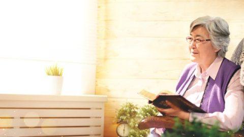 Comprendere le menzogne e trovare il percorso della libertà dal peccato attraverso la ricerca