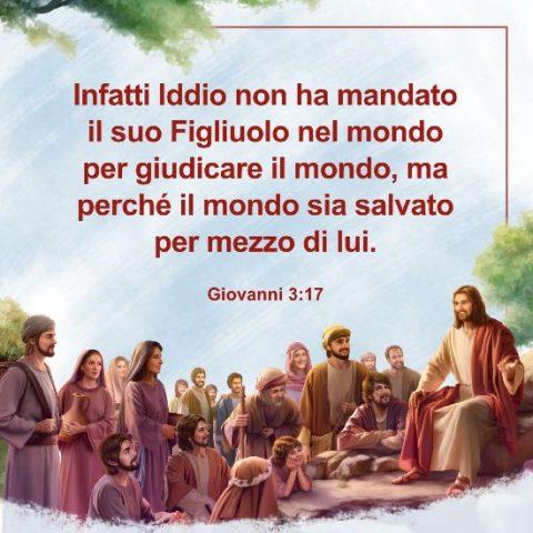 Giovanni 317