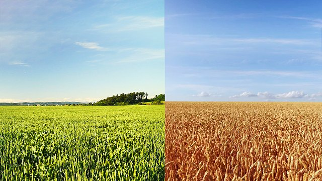 La differenza tra la via della vita eterna e quella del pentimento