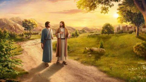 Che significa seguire la volontà di Dio? Si segue la volontà di Dio se ci si limita a predicare e operare per il Signore?