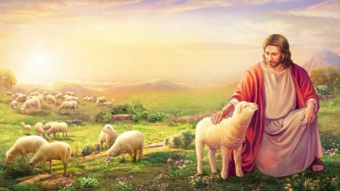 Sapendo discernere la voce di Dio, potremo accogliere il ritorno del Signore Gesù